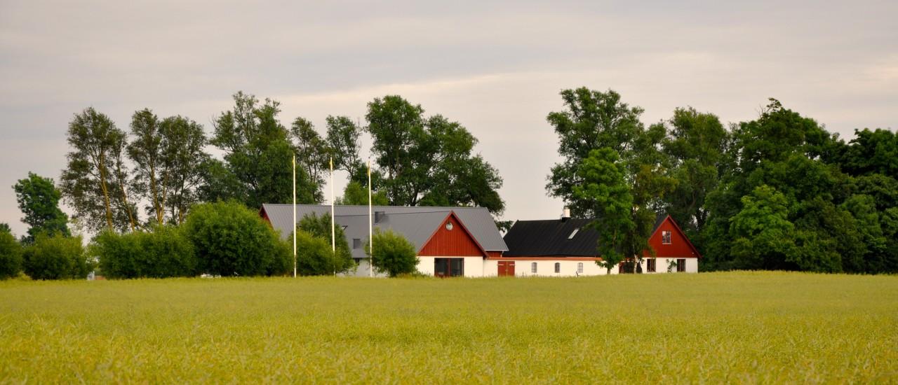 Sköna dagar på gården